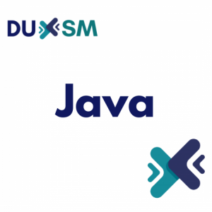 Group logo of Java